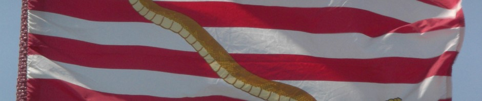 Dont Tread on the US Navy!